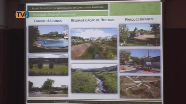 Autarquia apresenta Plano Estratégico de Arborização