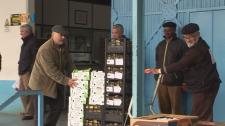 Recolha Solidária ajuda Mais de Mil Pessoas na freguesia da Venteira