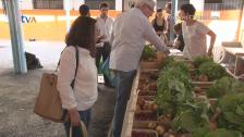 JF Venteira e Cooperativa Fruta Feia Ajudam Famílias Carenciadas