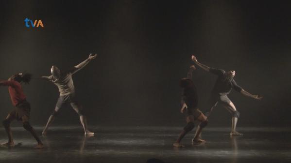 Companhia Belga Questiona o homem através da Dança Contemporânea