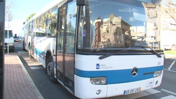AML Recebe 750 mil euros para Reforçar Oferta de Transporte Público